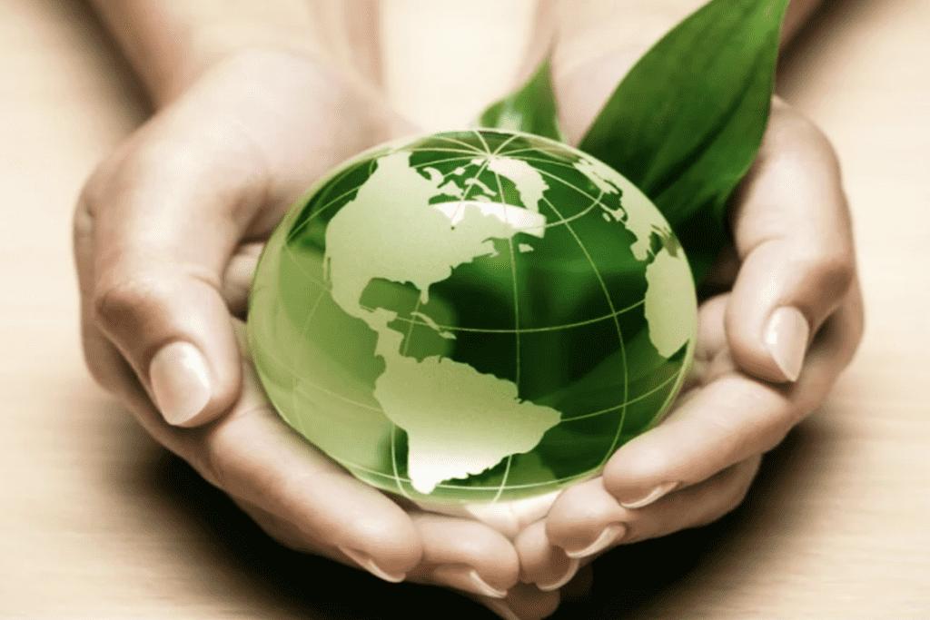 Renewable Energy Education